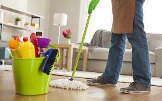 Парогенератор бытовой для влажной уборки квартиры