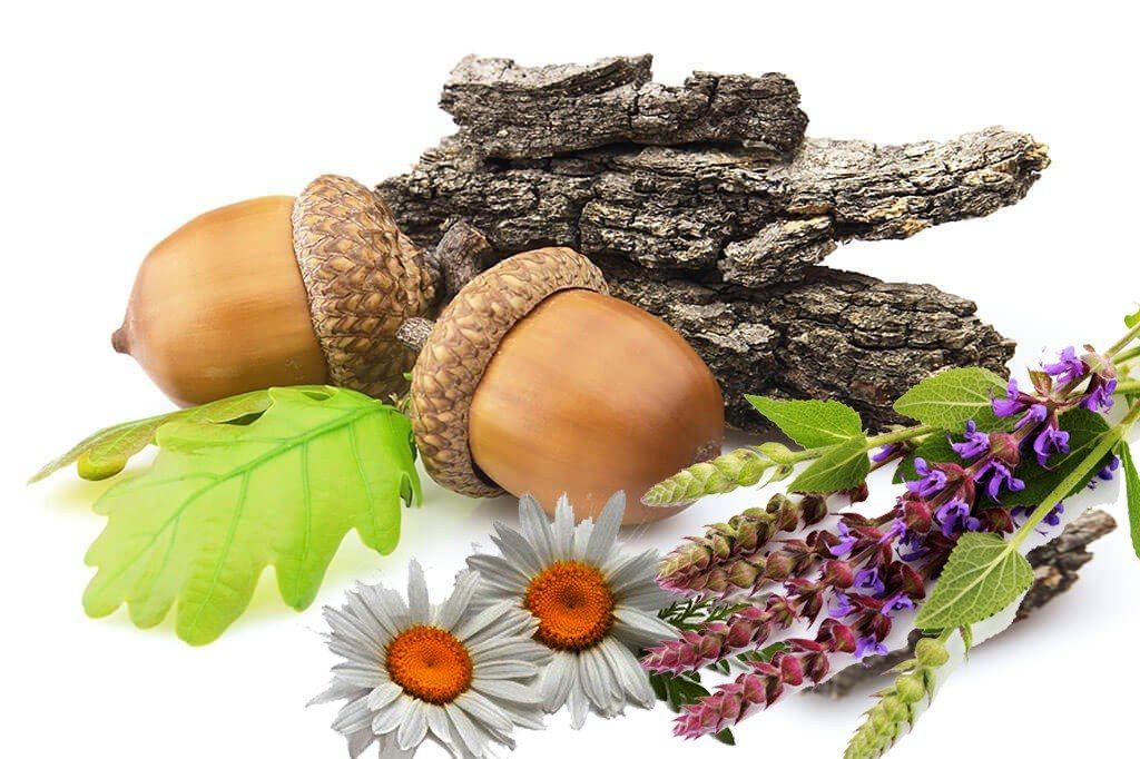 Растительные средства устранения запаха